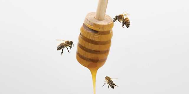 honey, pure manuka honey, New Zealand honey, Honey Drizzle